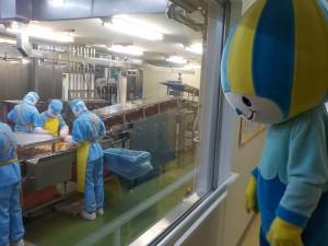 味の素工場4