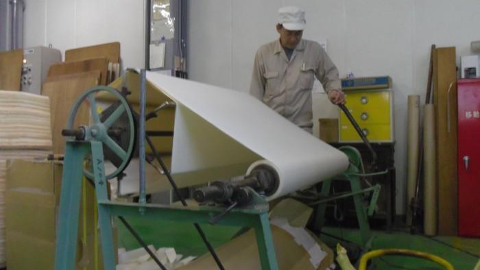 IMGP2008