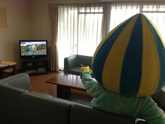 テレビ見るミナモ